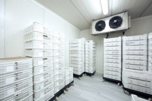 refrigeration services for commercial property owners and partners